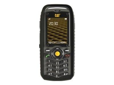 CATB25