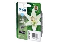 Epson T0595